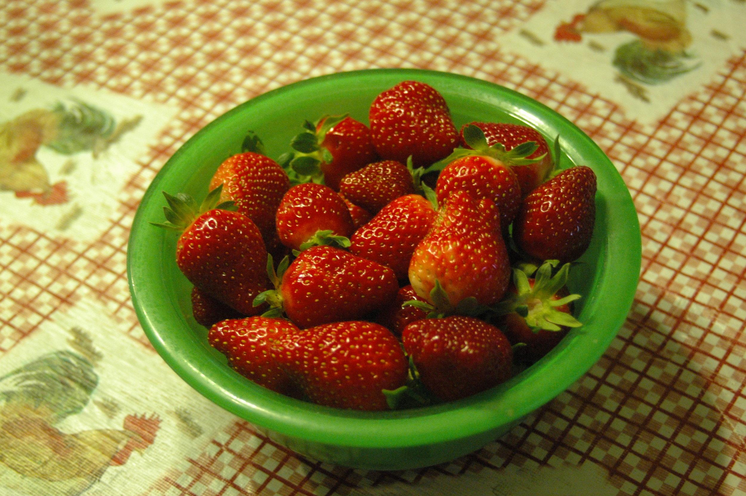 strawberries 2016.JPG