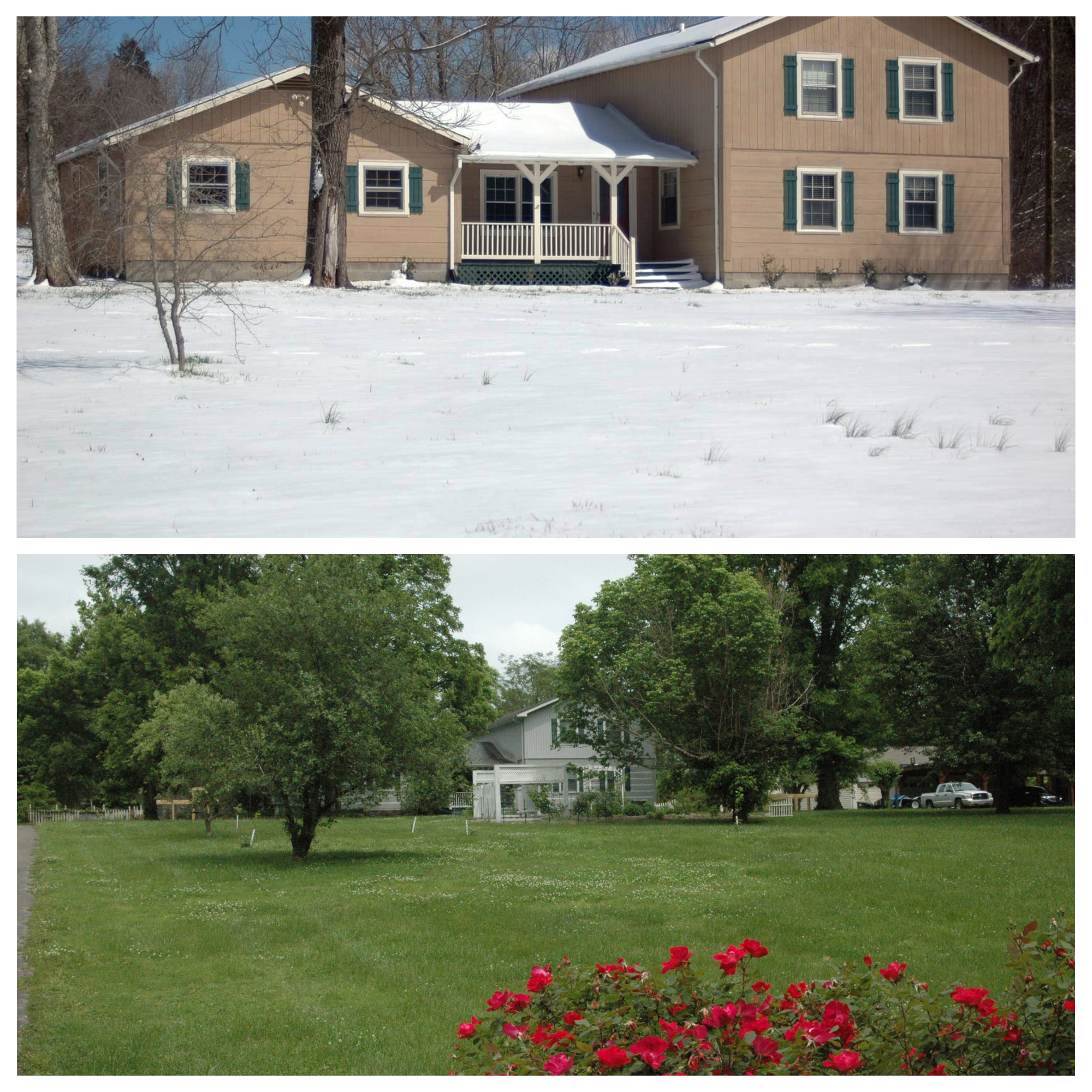 The first picture is how the house looked when we bought it. Apparently they didn't like living in a log home so they painted it! The second picture is what our homestead looks like now. In case you wondered, most of my gardens are behind the house.