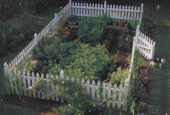 The photo of the ideal garden I wanted to create.