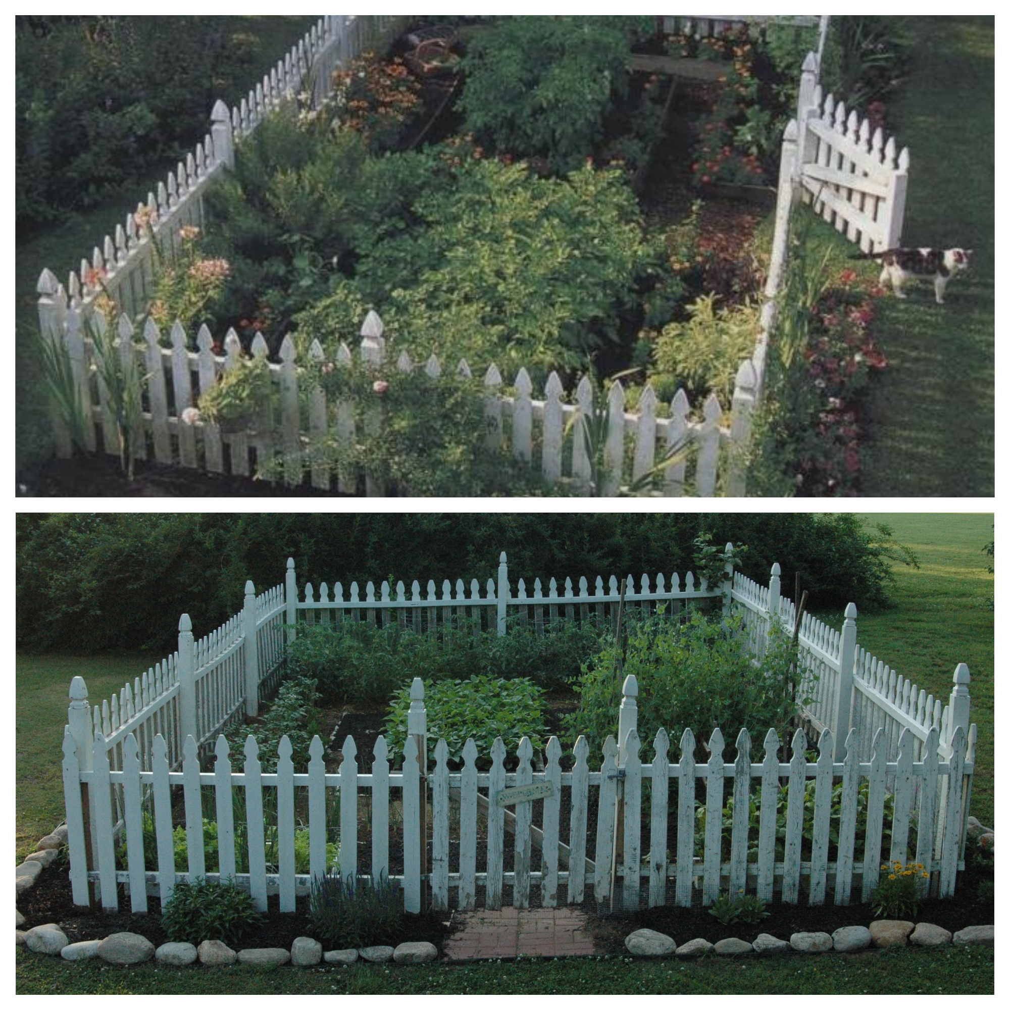 Top picture: Photo of my ideal garden; Bottom picture: The garden I created.