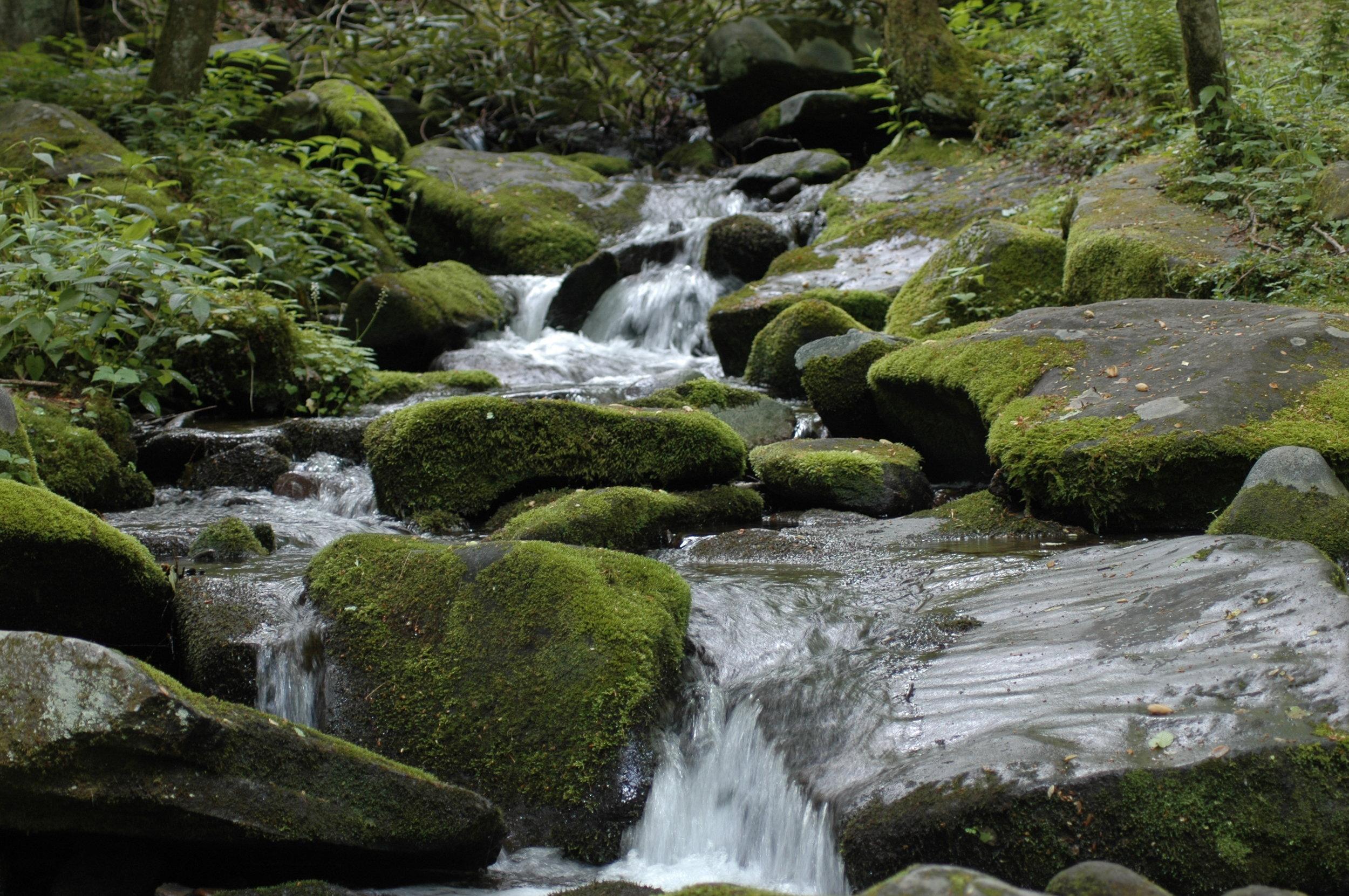 Smoky Mountain Stream.JPG