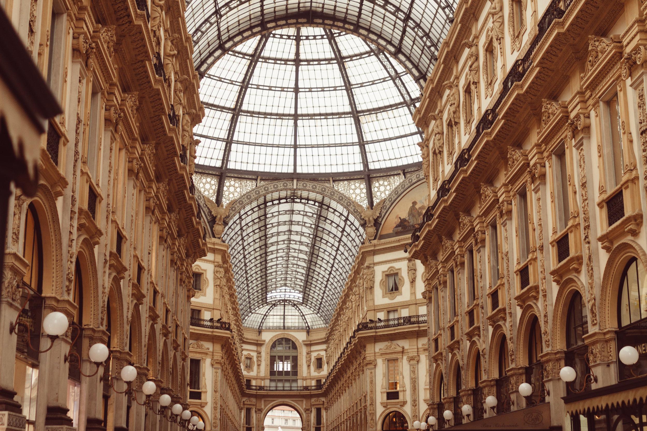 shopping (3 of 8).jpg