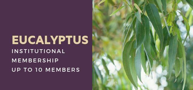 renew_eucalyptus_rextilearts.jpg