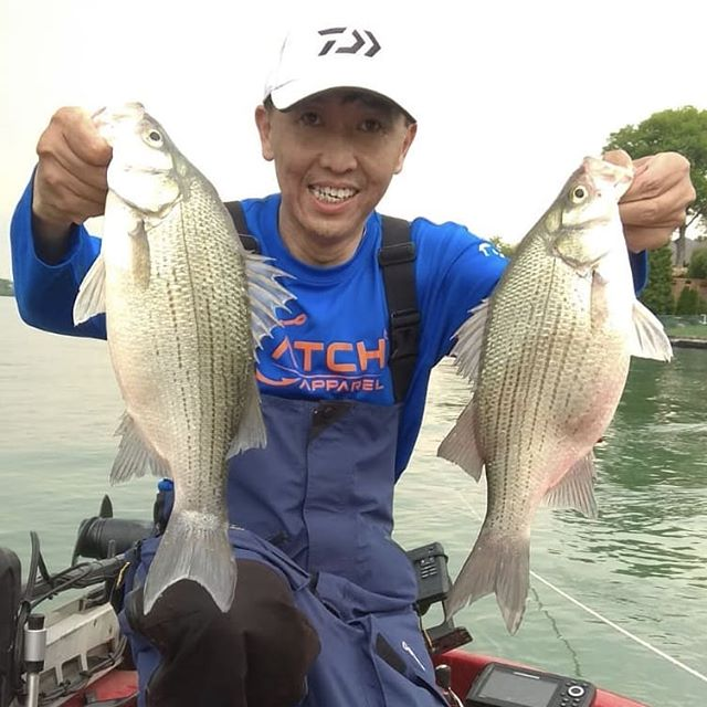 *CATCH ALERT* @patrick_tsoi_  double fisting silver bass!👊👊👊 ▪️ ▪️ ▪️ #catchapparel #fishingapparel #uvprotection #longsleeveuv #fishon #tightlines #allunderonebrand #bass #fish #fiahing #lake