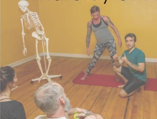 anatomy of yoga.jpg