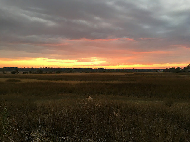 Grassy sunset along the Stono River