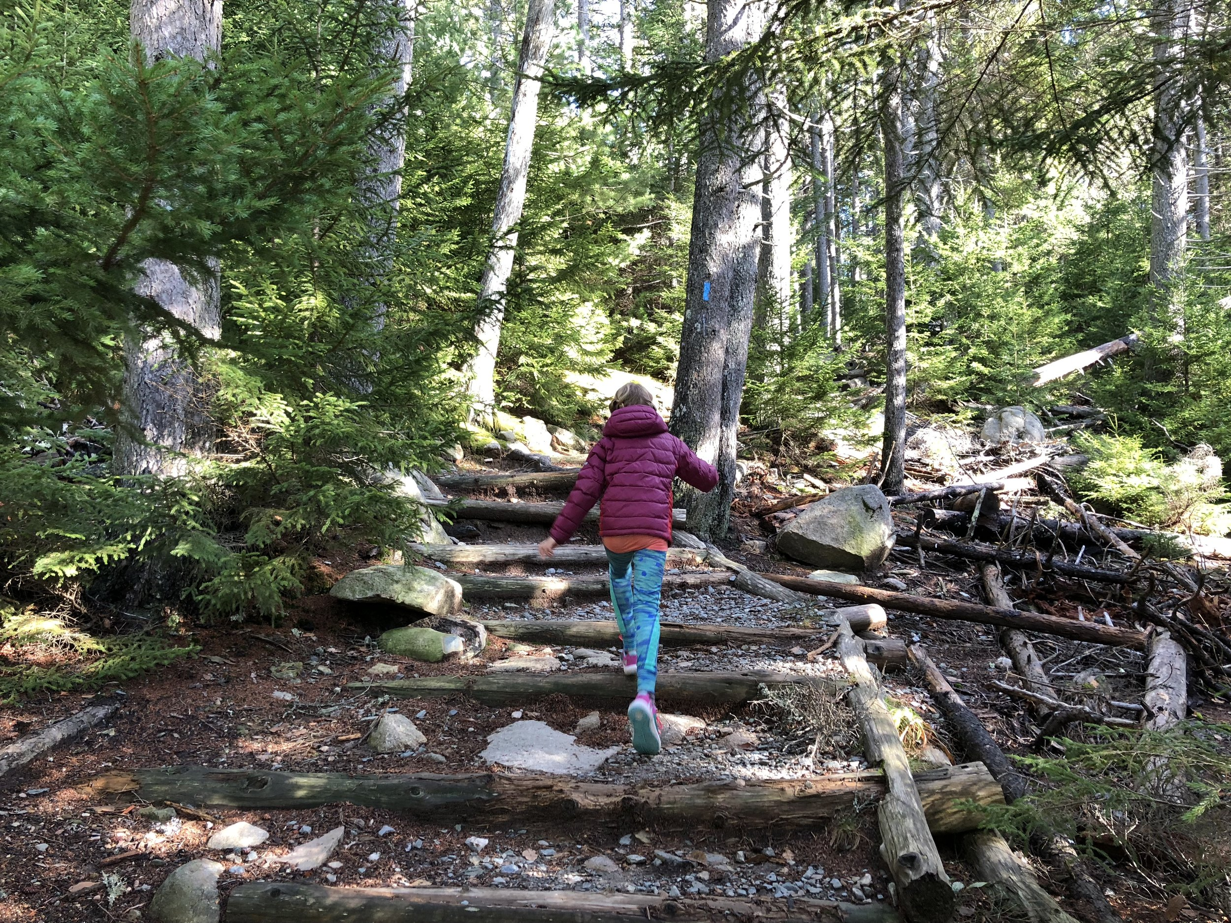 Hiking Flying Mountain, Acadia National Park, Mount Desert Island, just a few miles from our home.