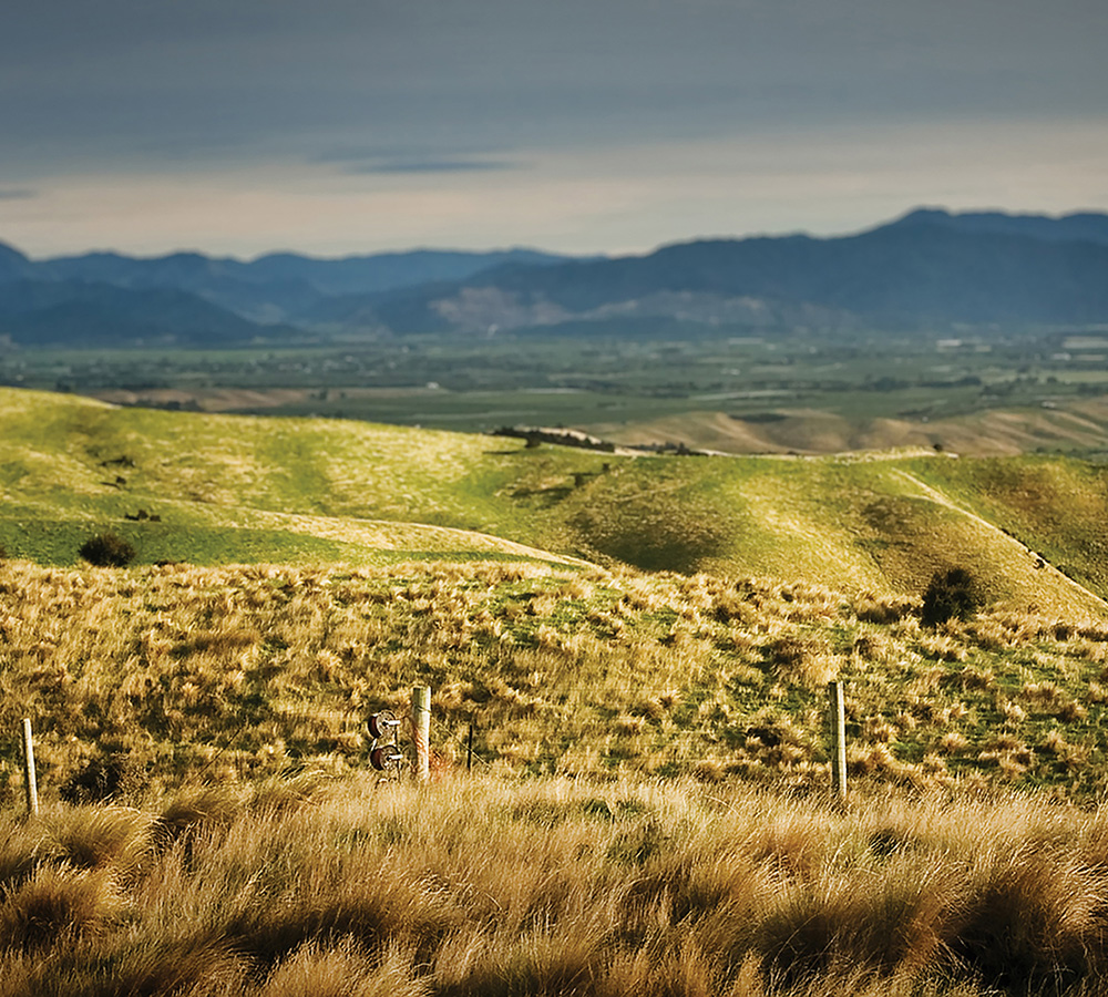 Awatere Weather Station -