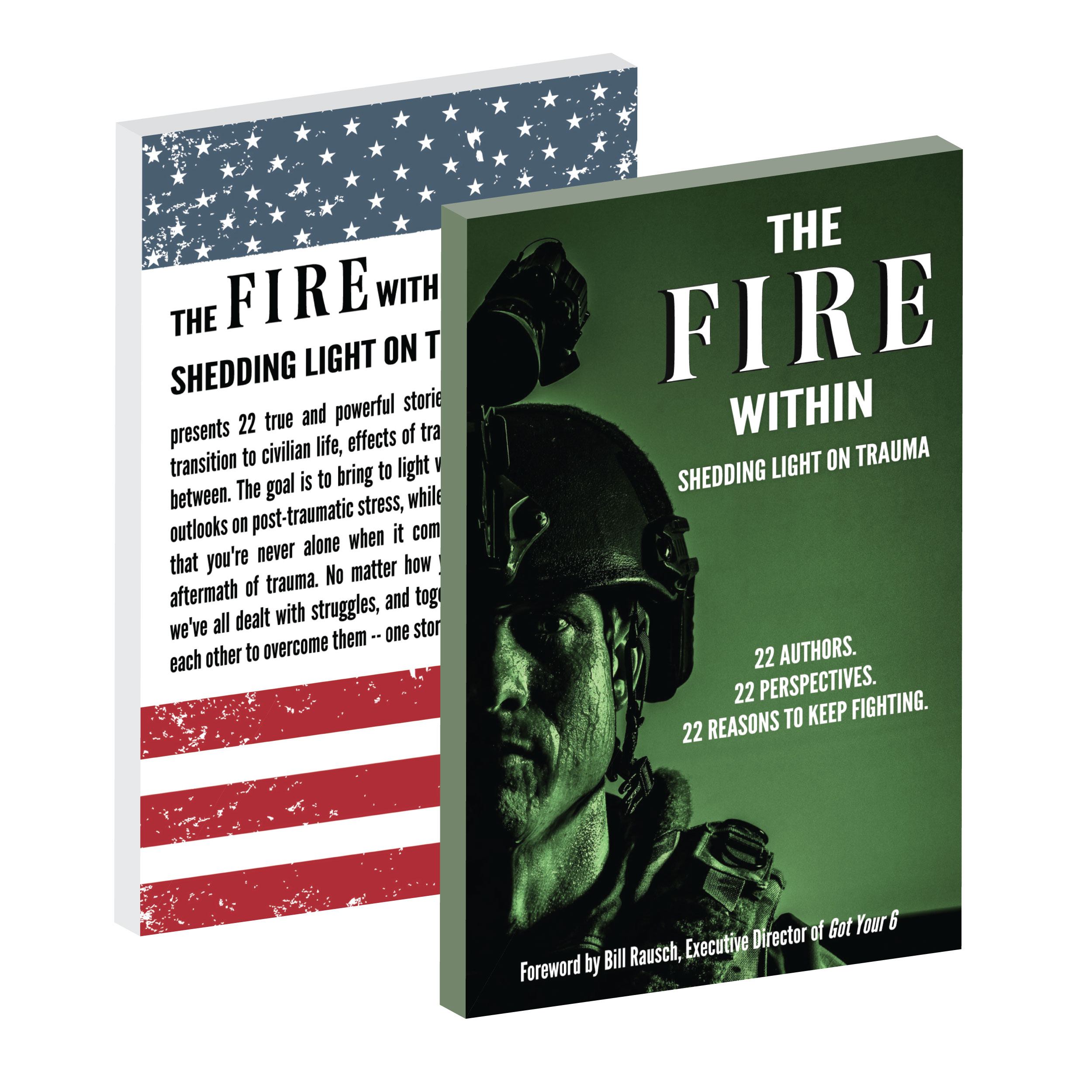 TheFireWithin_BOOKCOVER.jpg