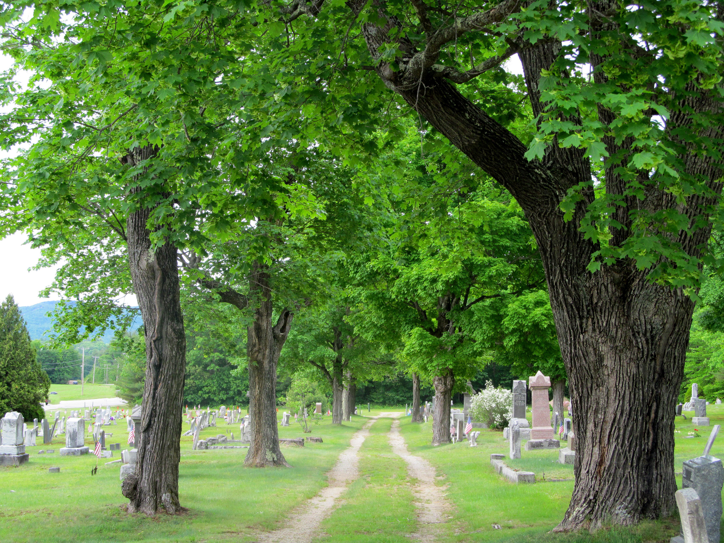 Pine Grove Cemetery     Photo Credit Just Snap Photography