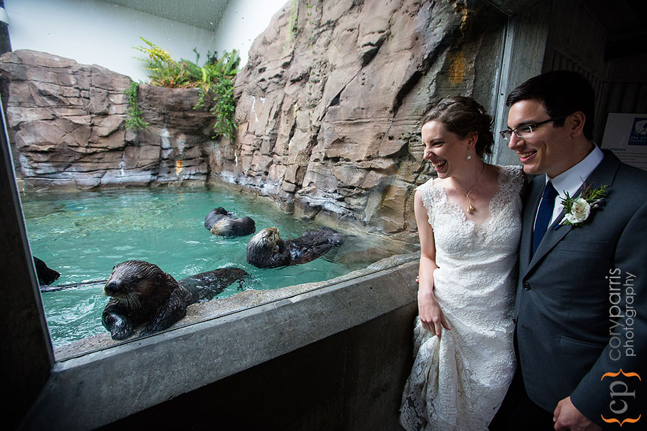 Otters and bride and groom