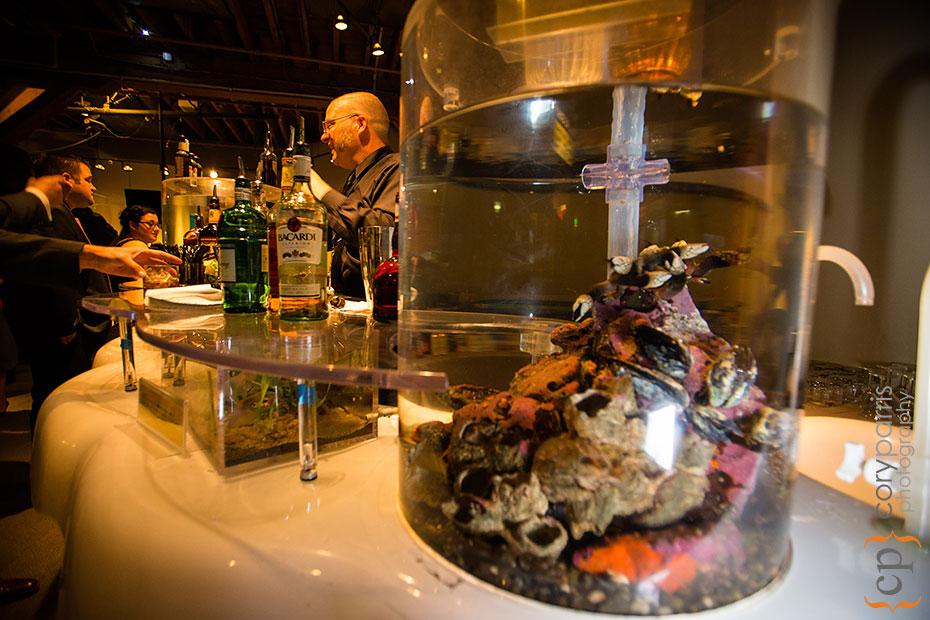 Bar at the Seattle Aquarium wedding