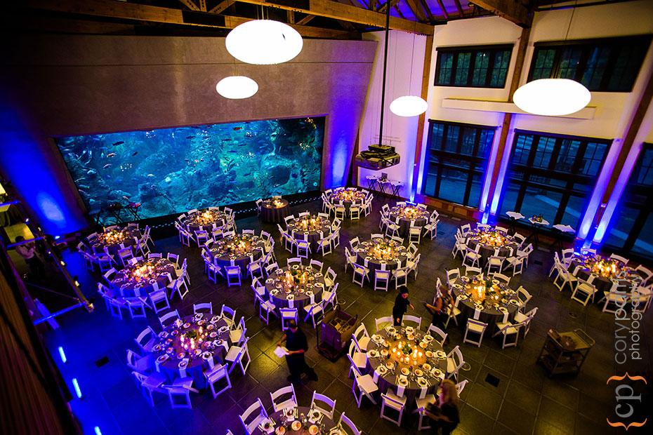 wedding reception setup at Seattle Aquarium