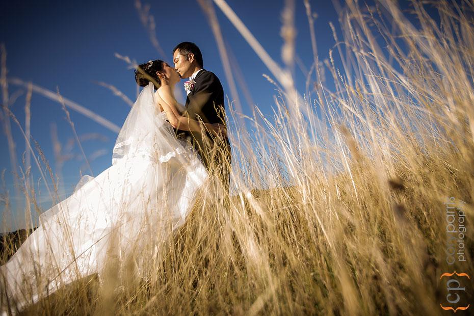 wedding portrait in the long grass