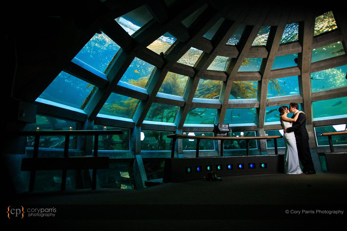 I love photographing weddings at the Seattle Aquarium. It is just non stop awesome photo opportunities. I could have chosen a hundred images for this blog post.