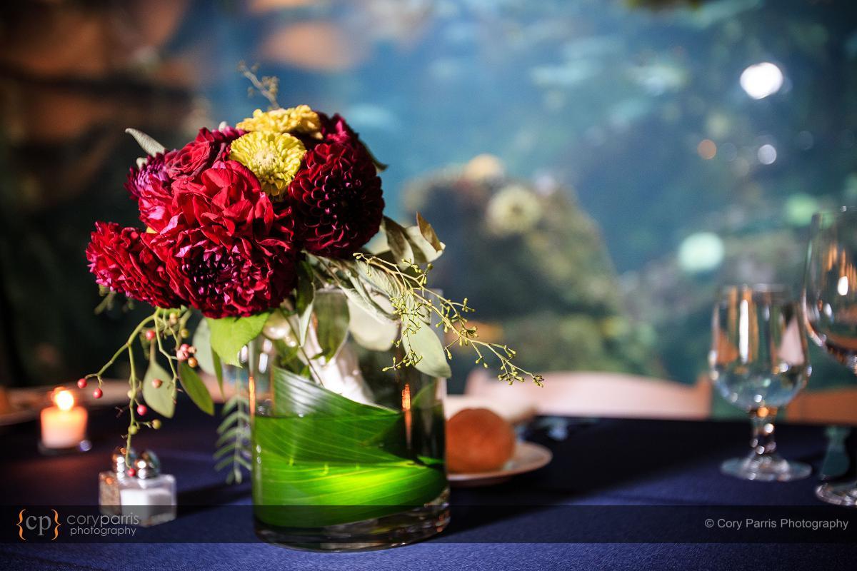 018-seattle-aquarium-wedding