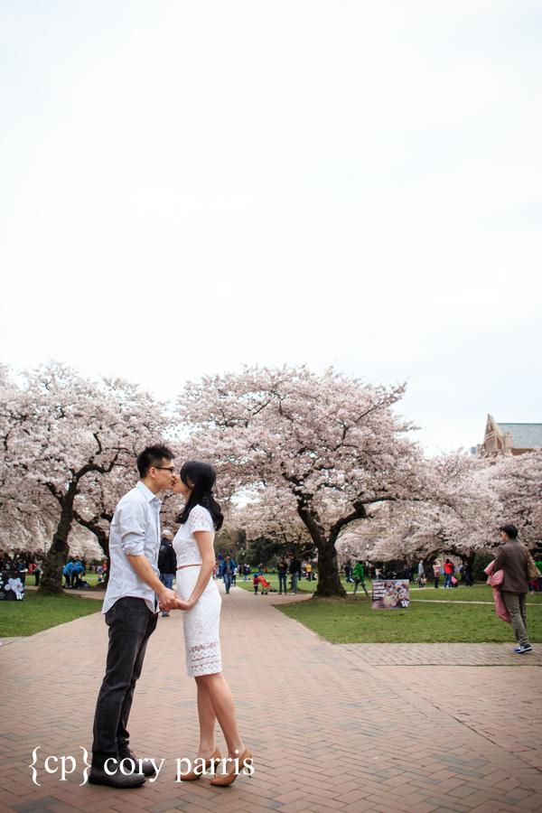 Engagement portrait at UW with the cherry tree blossoms