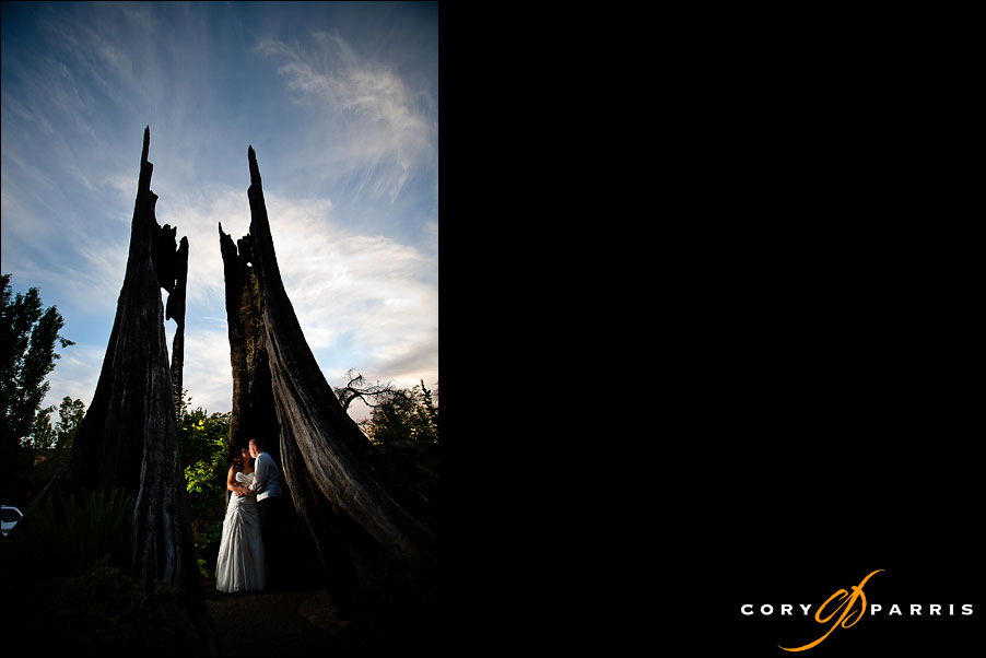 bride and groom portrait with strobist lighting by seattle wedding photographer cory parris