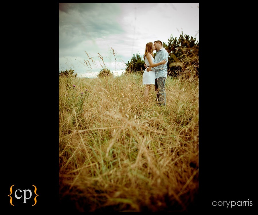 engagement portrait of a couple in a field by seattle photographer cory parris