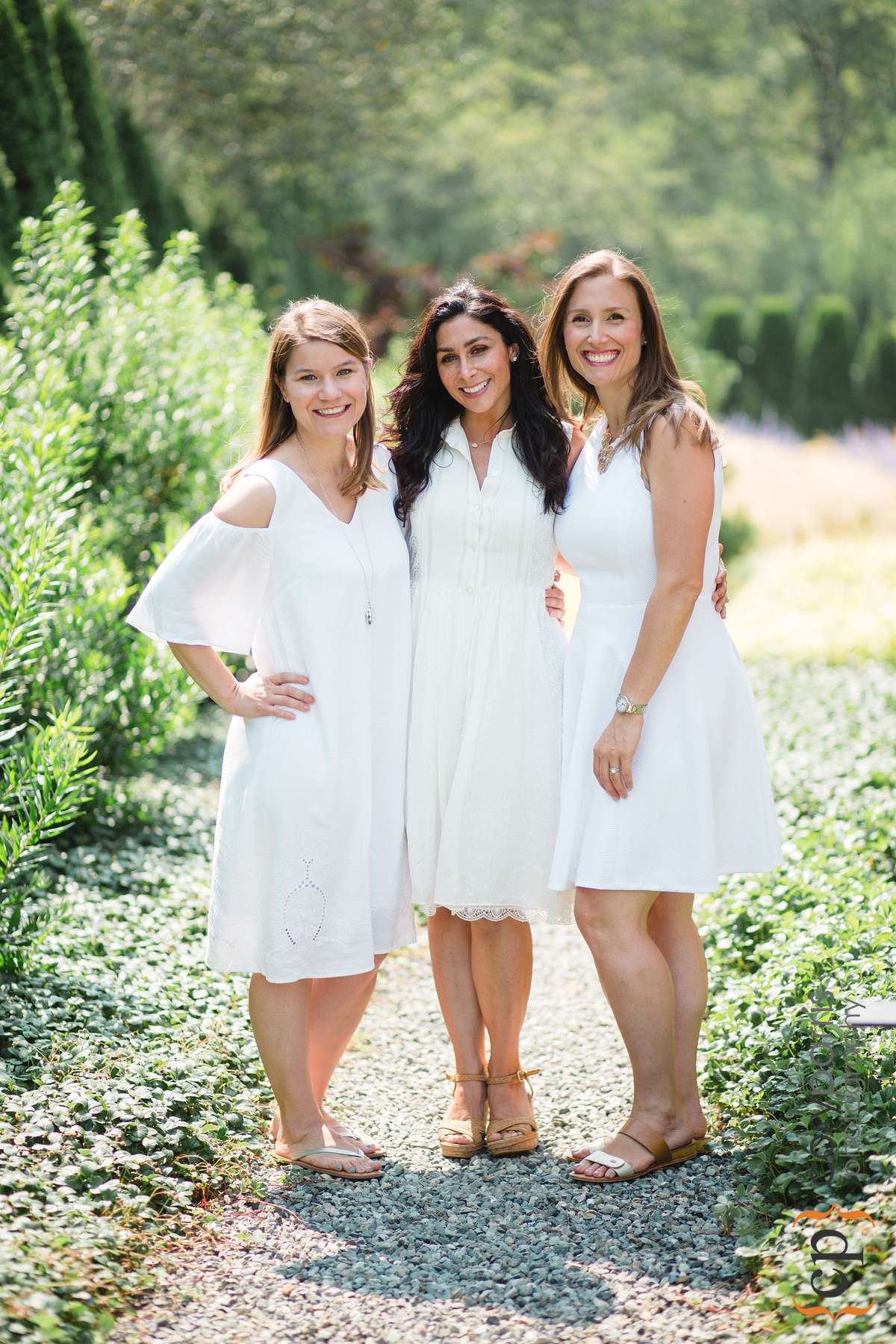 Three sisters by marriage