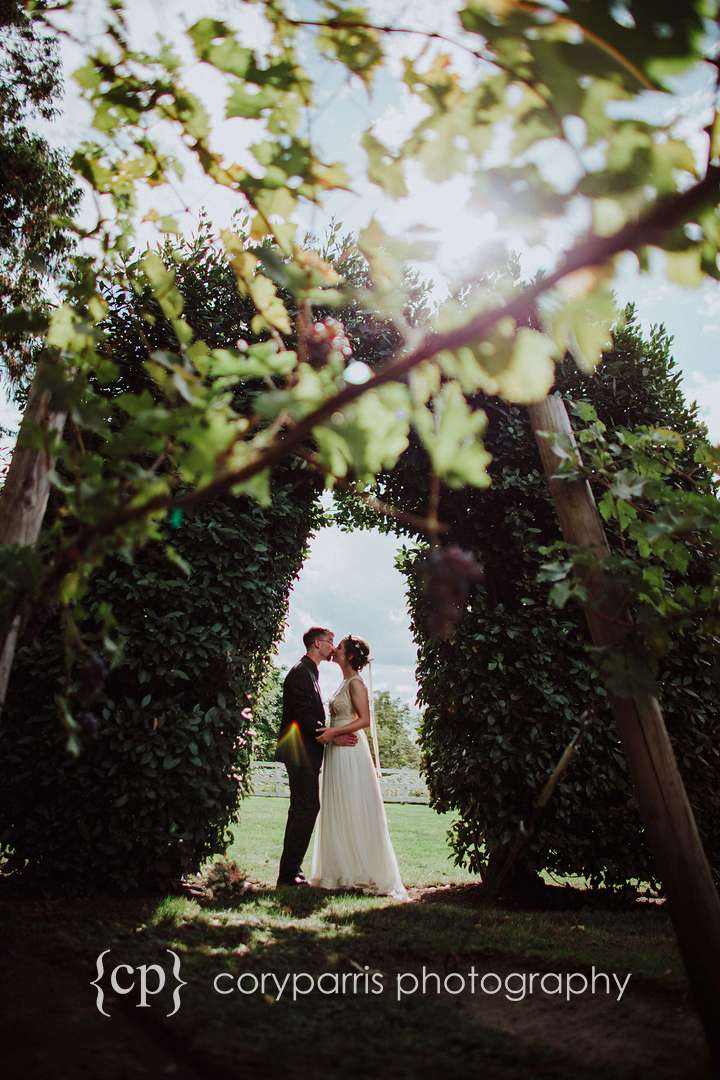 Beautiful wedding photograph with grape vines at a winery in Woodinville