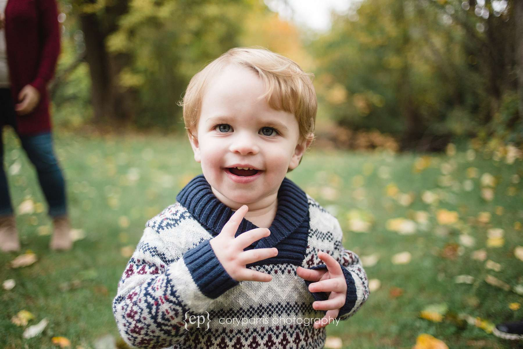 Toddler in fall leaves seattle portrait photography