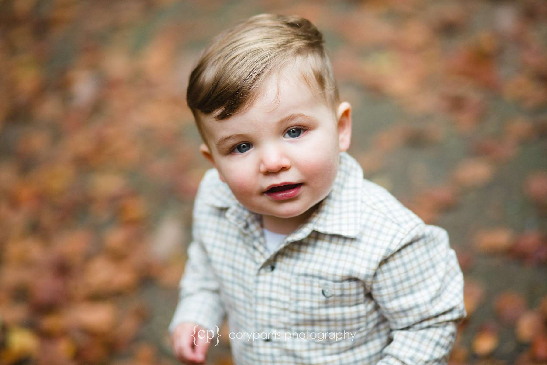 Adorable little boy Child Photography in Seattle