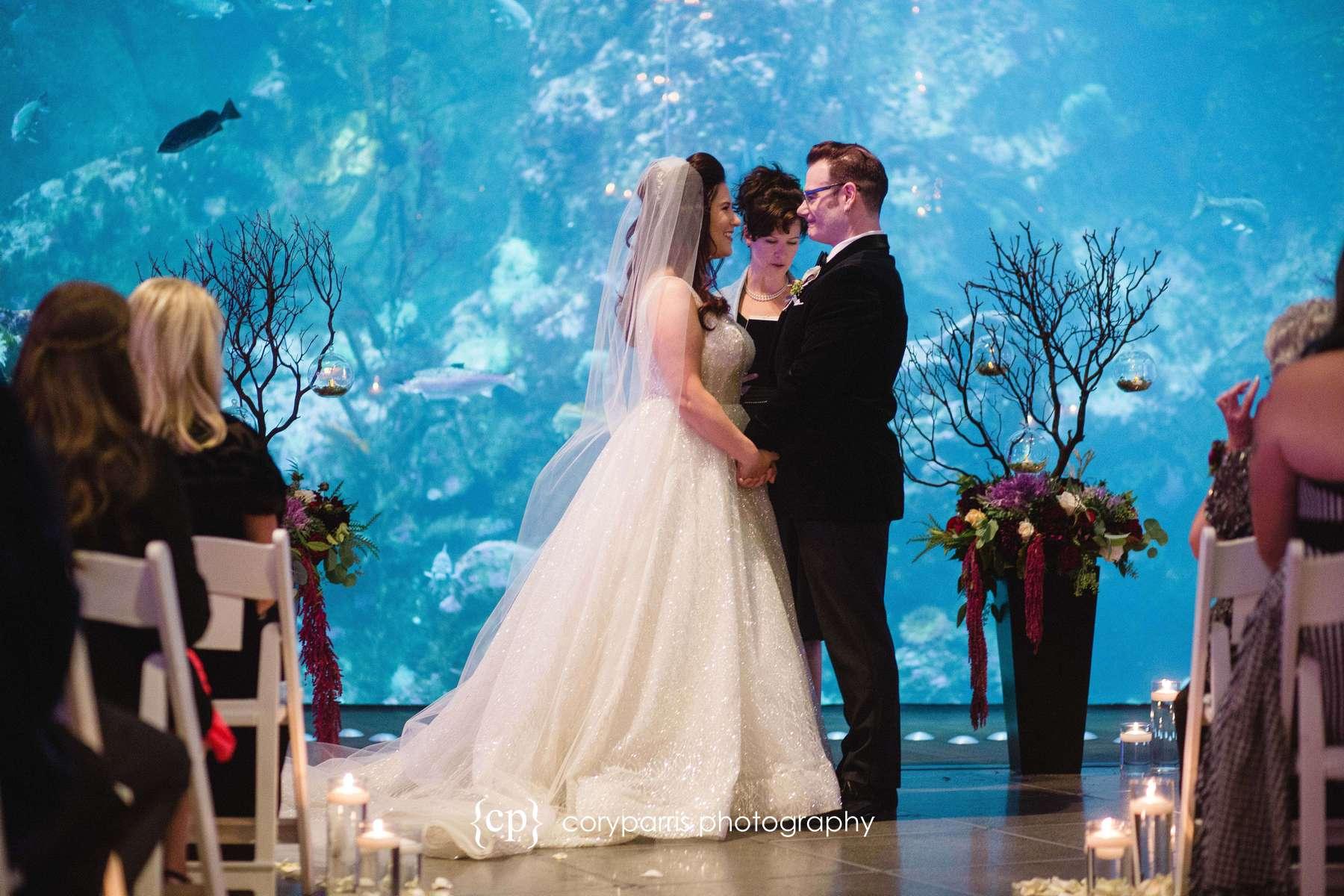 Wedding ceremony at the Seattle Aquarium