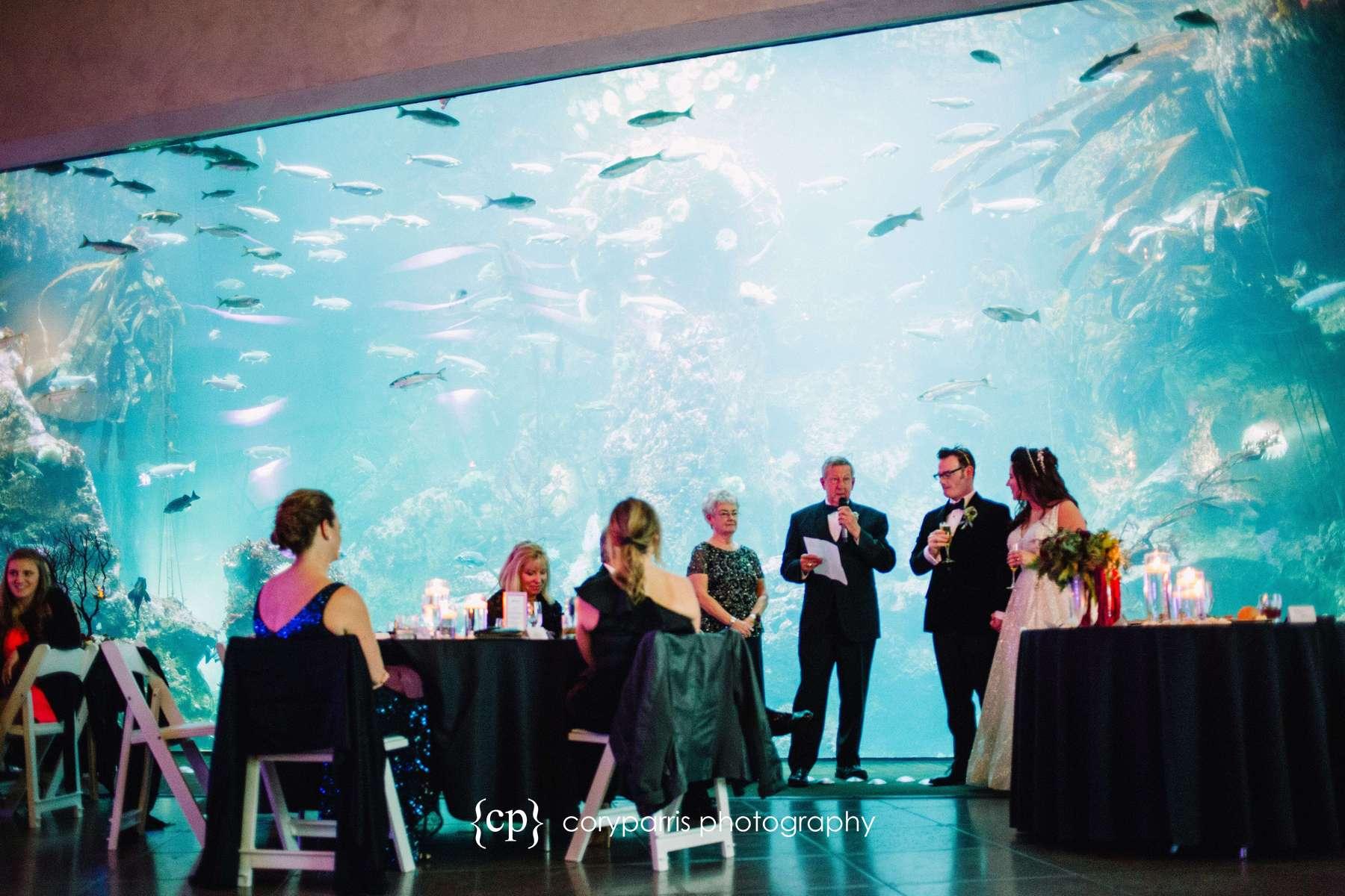 Toasts at Seattle Aquarium wedding reception