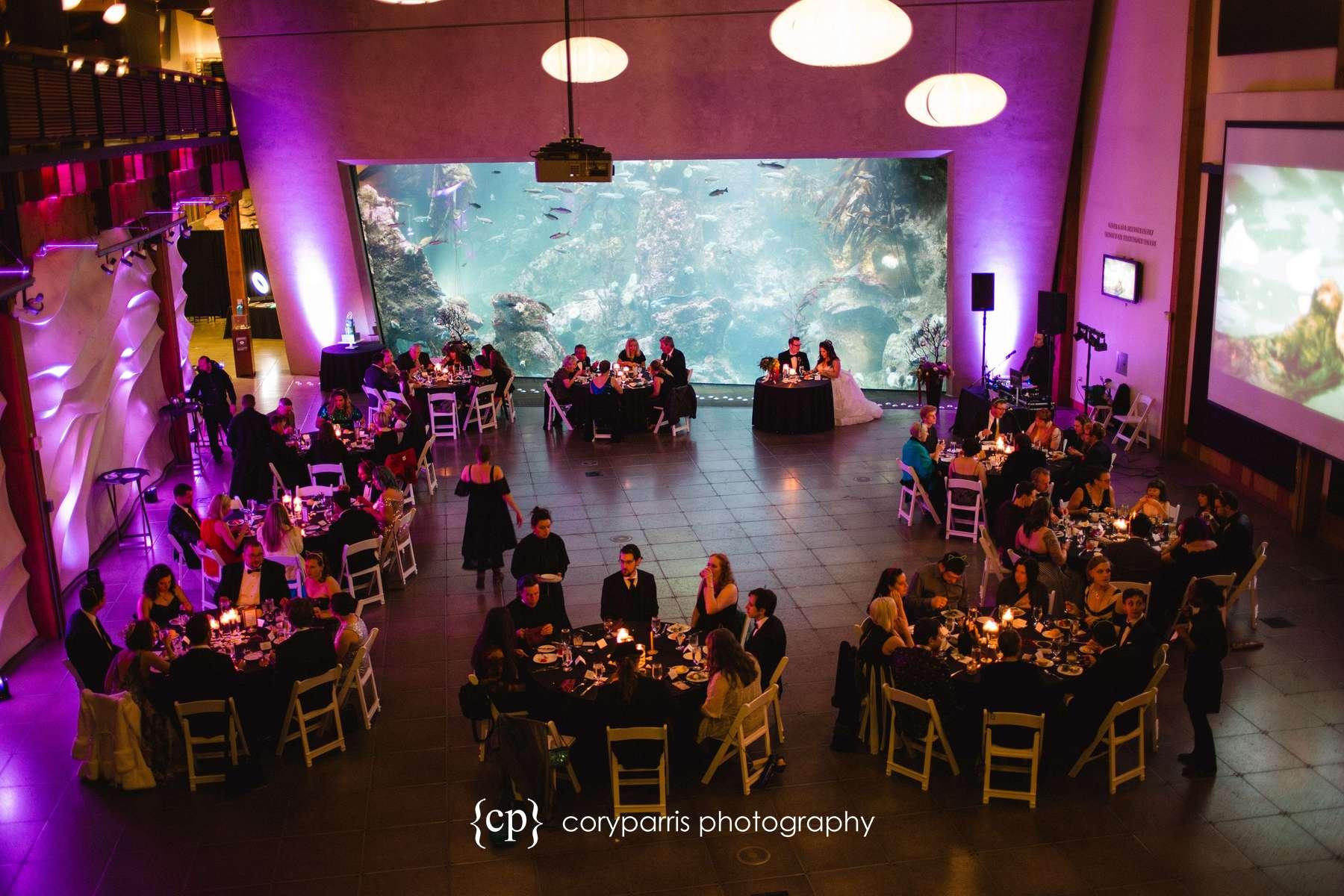 Wedding reception at the Seattle Aquarium