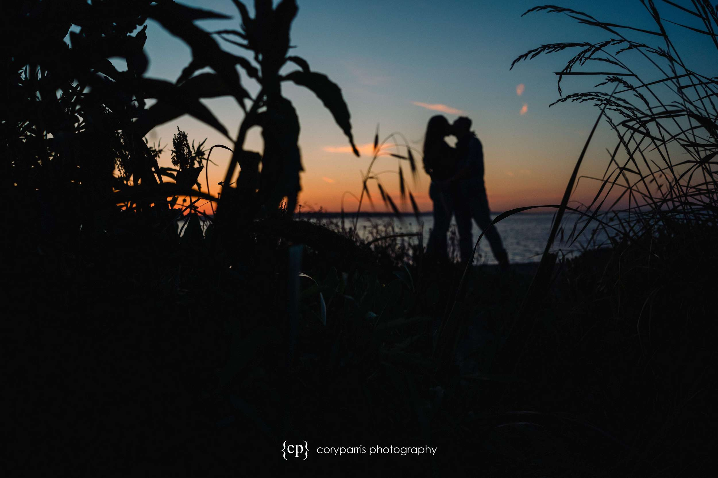 With this one, I focused on the long grass to make the couple out of focus for an artistic look.