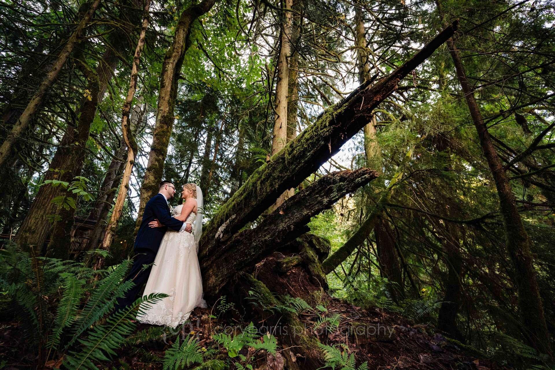 510-treehouse-point-wedding-photography.jpg