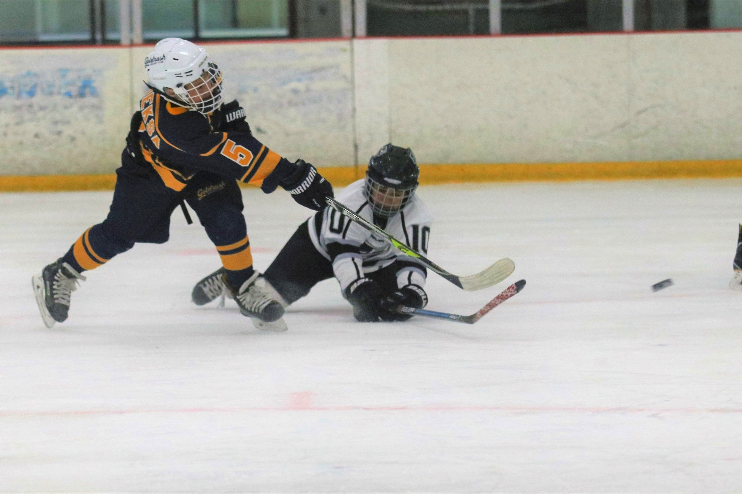 Prospect Hockey League -