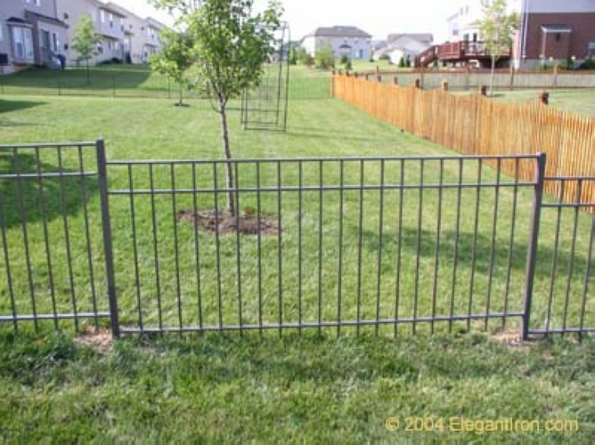 iron-fence-4.jpg