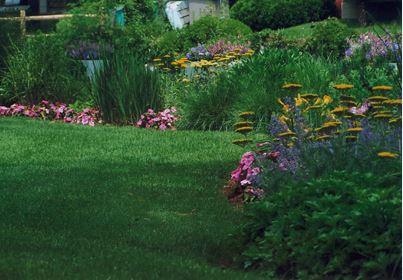 Briggs Landscape Design offers attractive property maintenance contracts for homeowners and commercial customers.