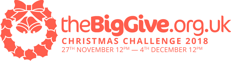 Big Give Logo.png