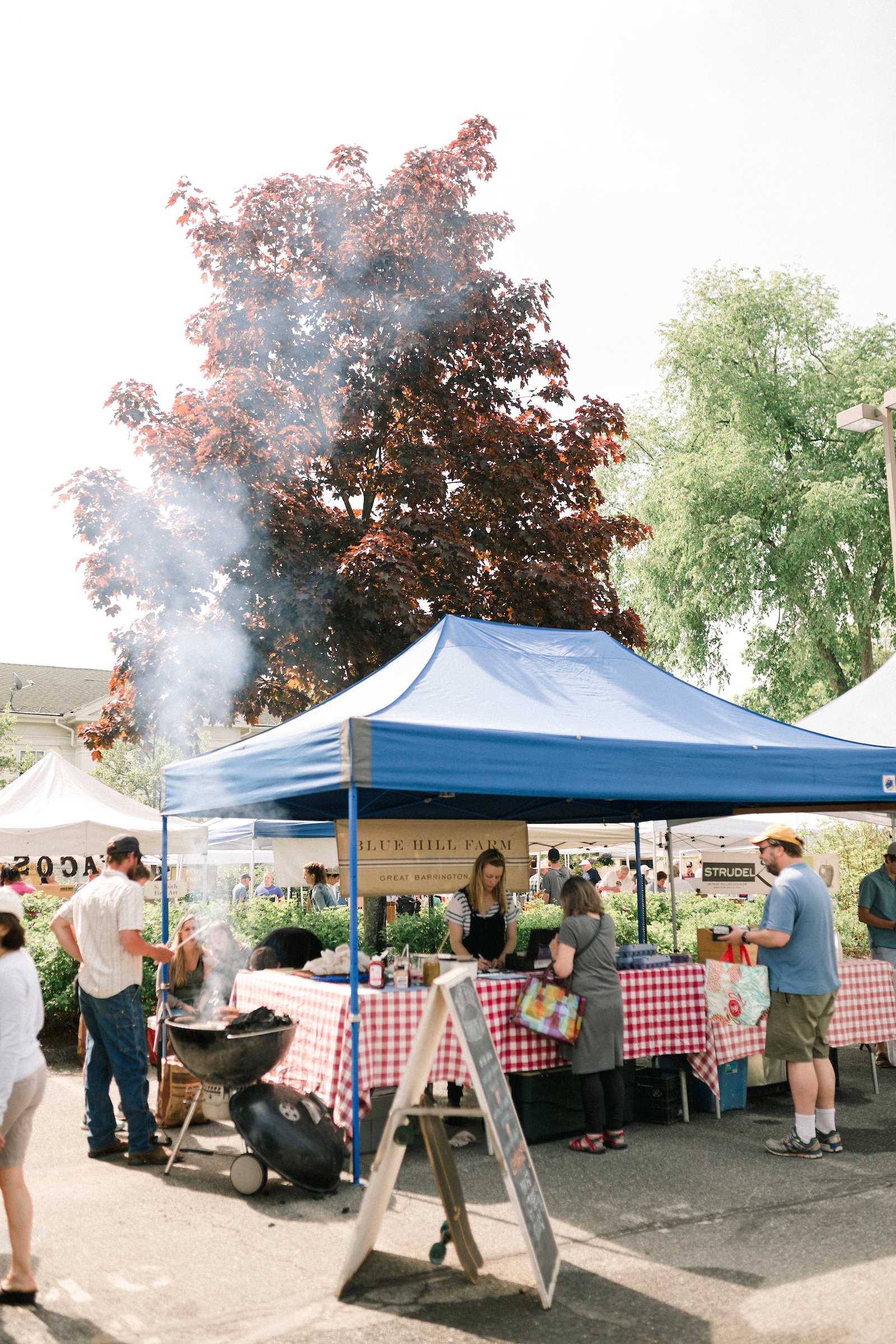 180524_Berkshire Farmers Markets_113.jpg