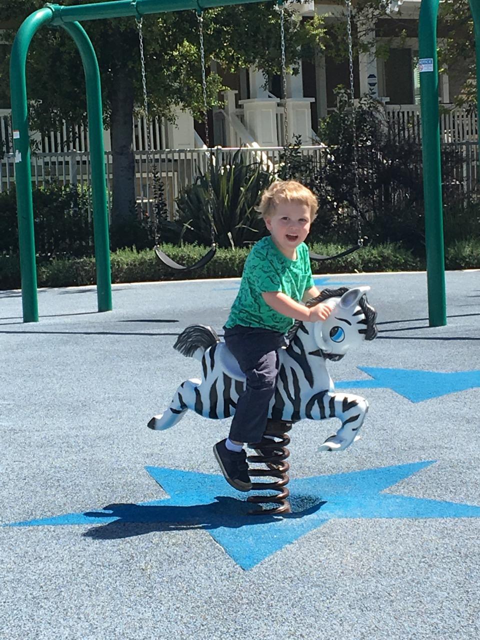 W13: Riding the zebra