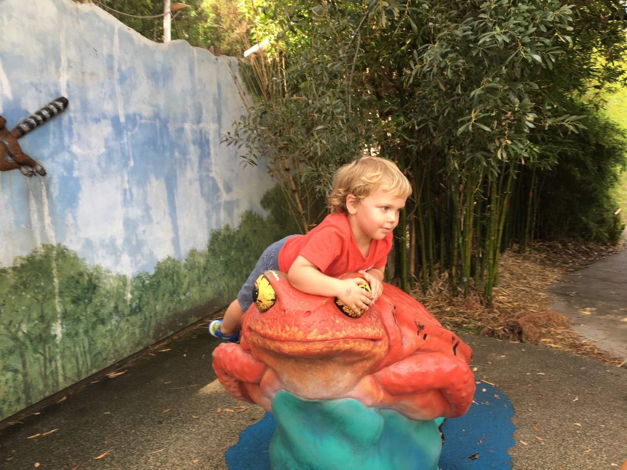 W37: Climbing the frog at the zoo