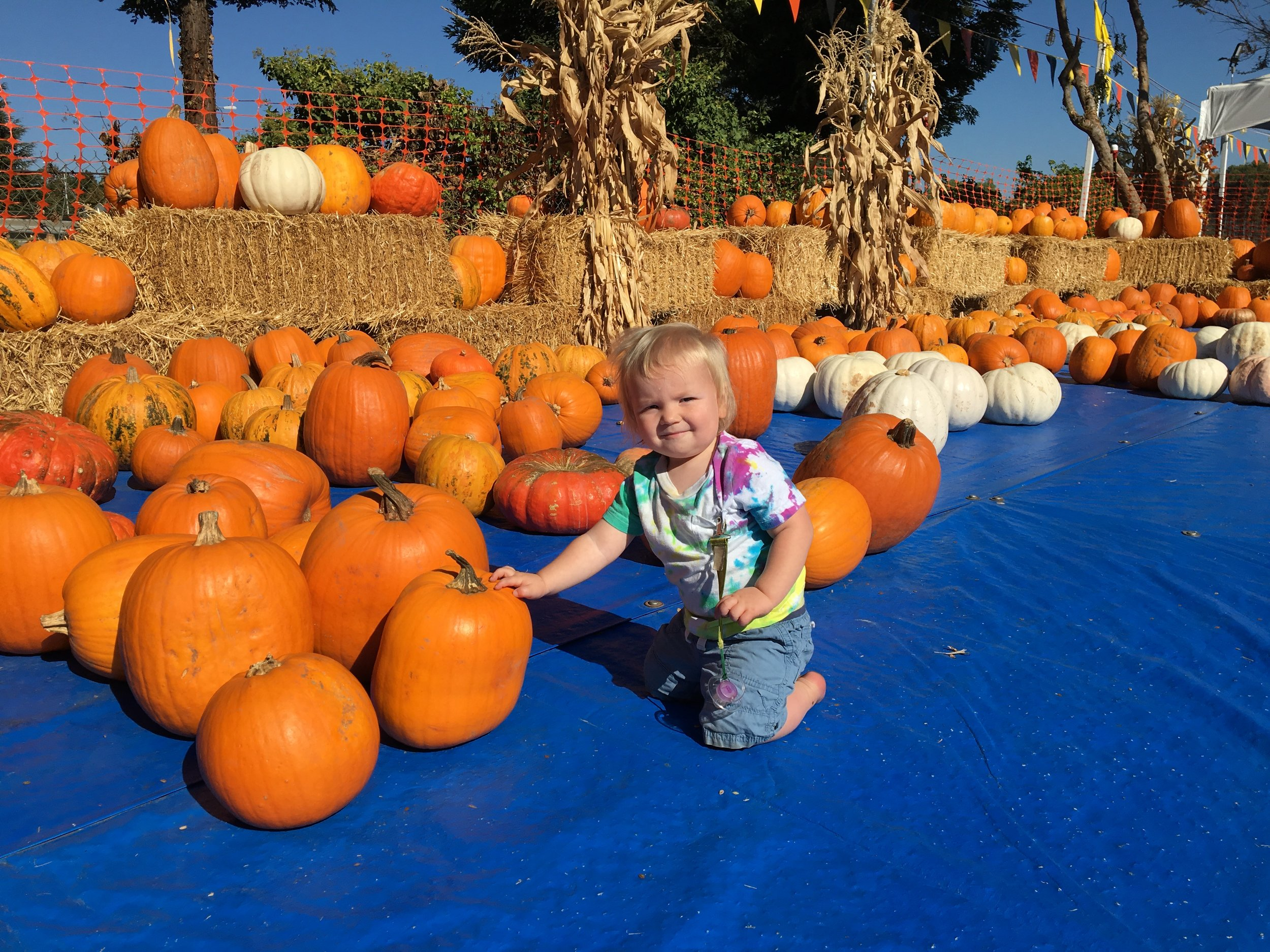 Posing in the pumpkin patch