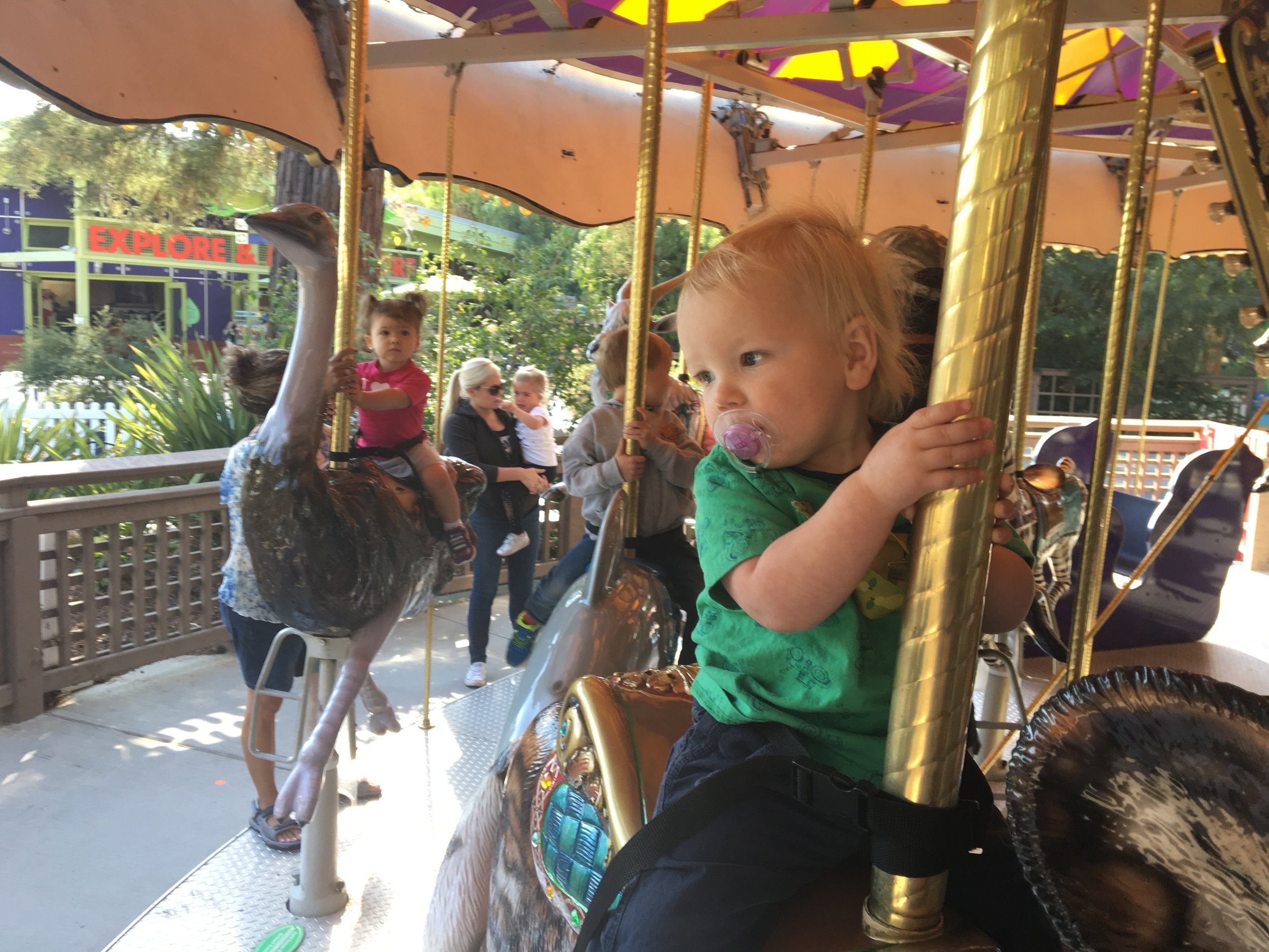 First time on the carousel