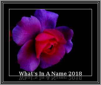 What's in a name 2018.jpg