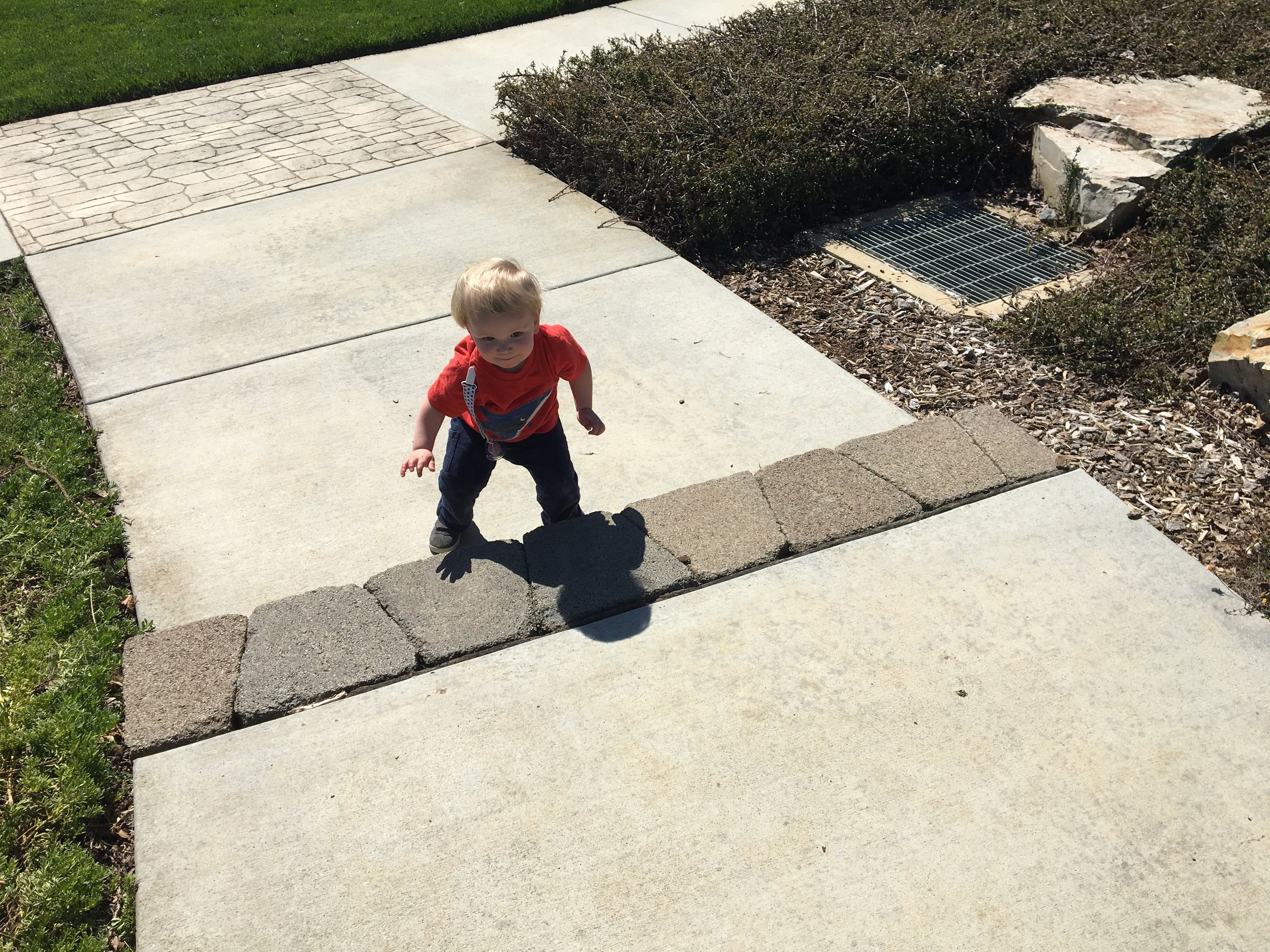 Toddler on the move