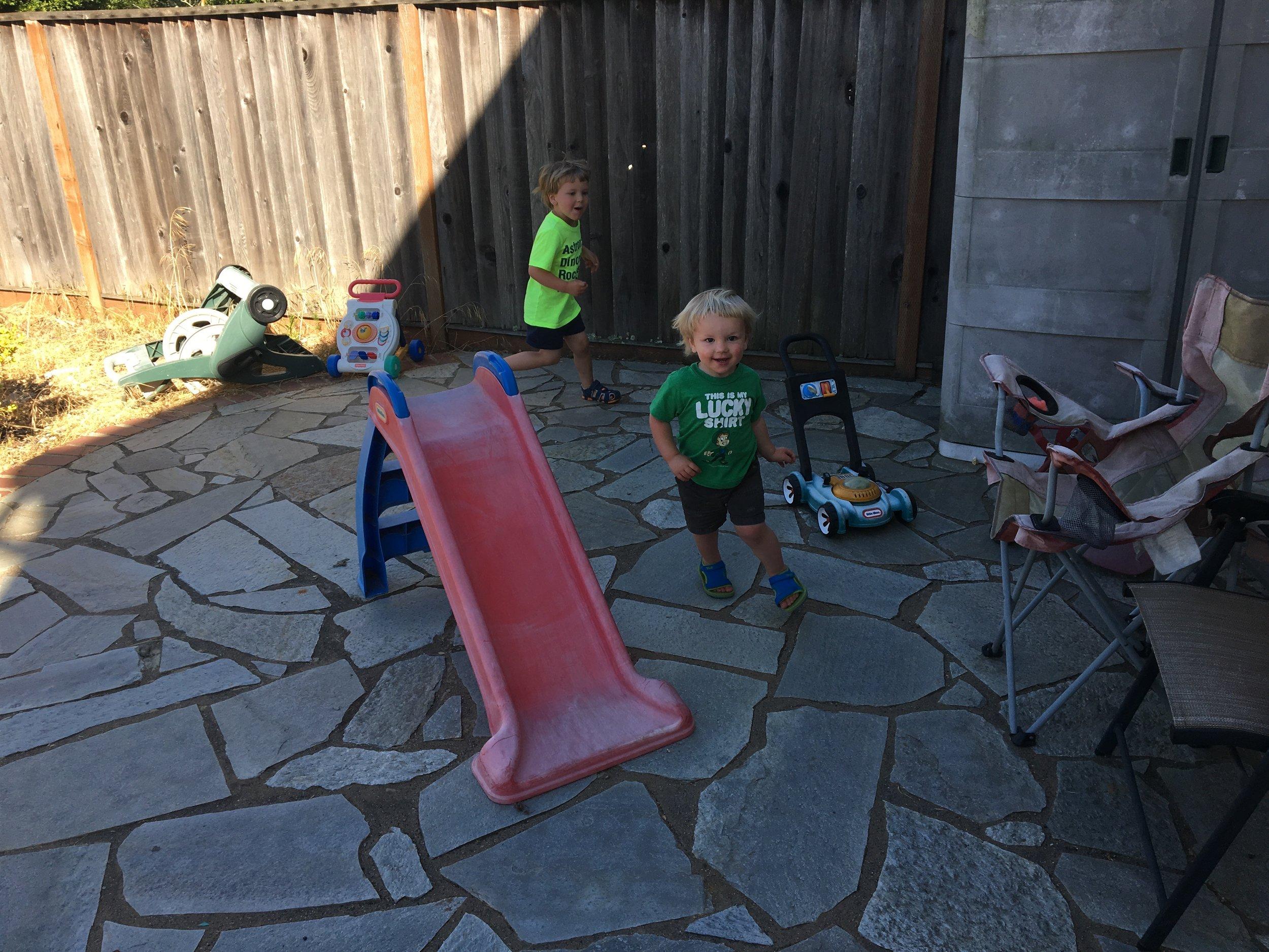 Backyard shenanigans