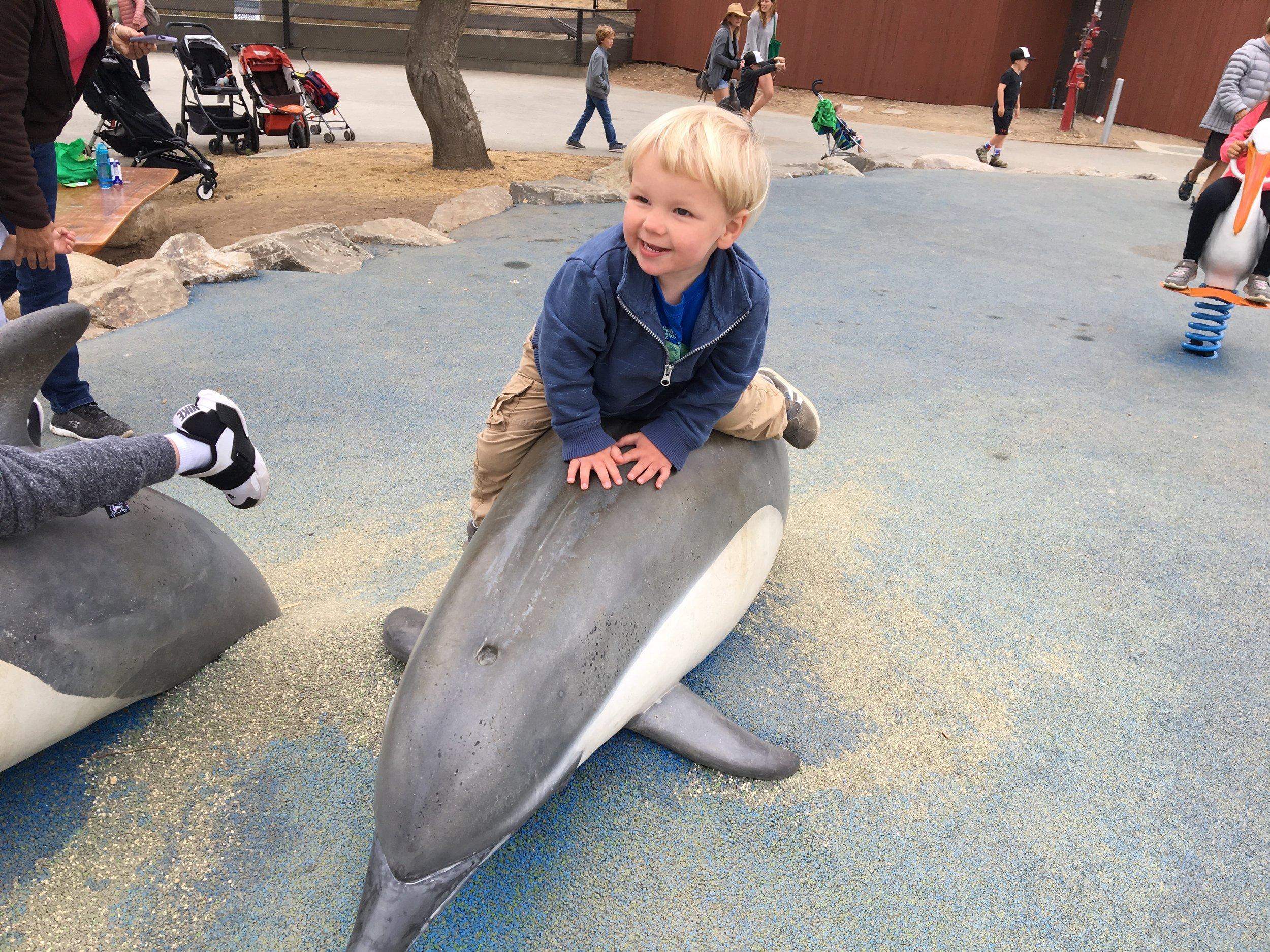 New Oakland Zoo playground