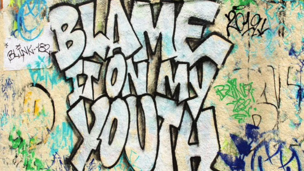 blink-182-Blame-It-On-My-Youth.jpg