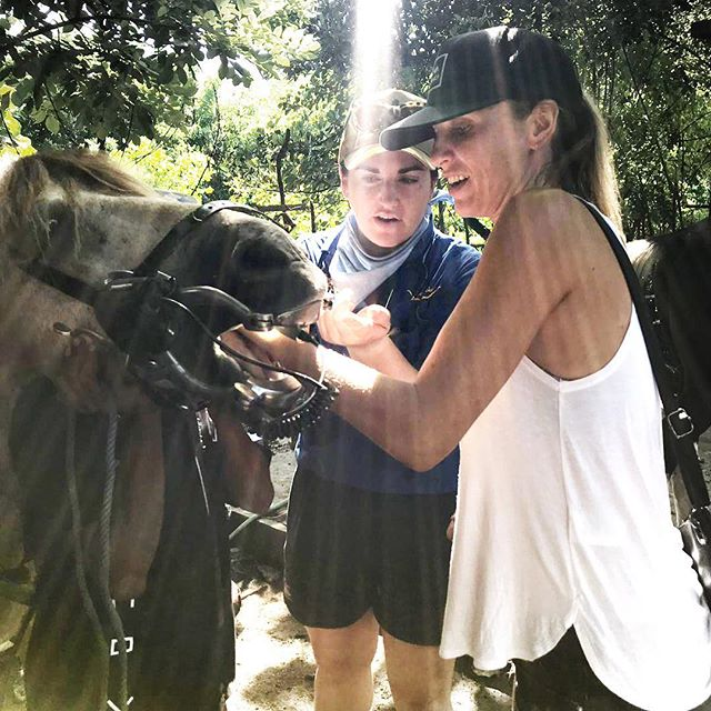 It's all hands on deck at the Gili Island Vet & Farrier Clinic! Jacqui from @lovehealanimals  is helping out with with a dental checkup on this gorgeous boy named Dennis. Thanks to Aussie Vet Grace Clifford for passing on her knowledge to Indonesian Vet Misha. Education is a key part of the work being done here and we are so grateful to these incredible volunteers for giving their time and expertise to help these hard working ponies 🙏 If you would like to help, please consider donating in the link in bio ❤️ #lovehealanimals #giliponies #healinggiliponies #giliponiessanctuary#animalrescue #animalrights #poniesofinstagram #ponies #horses#horsesofinstagram #helpthem #gilitrawangan #workinganimals