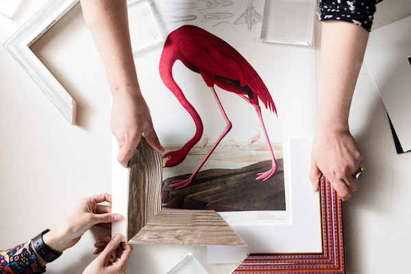 For instance, a thick, wood grain and natural looking frame pays homage to its naturalist creator as well as offsets the bright whites and pinks of the print.