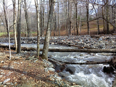 Project Highlights - + Boundary surveys along 15 miles of creeks and streams.+ Over 1,000 parcels surveyed.+ Primary and secondary survey control designed to NYS DOT & DEC survey standards.+ Stakeout of approximately 350 corners with capped rebar.
