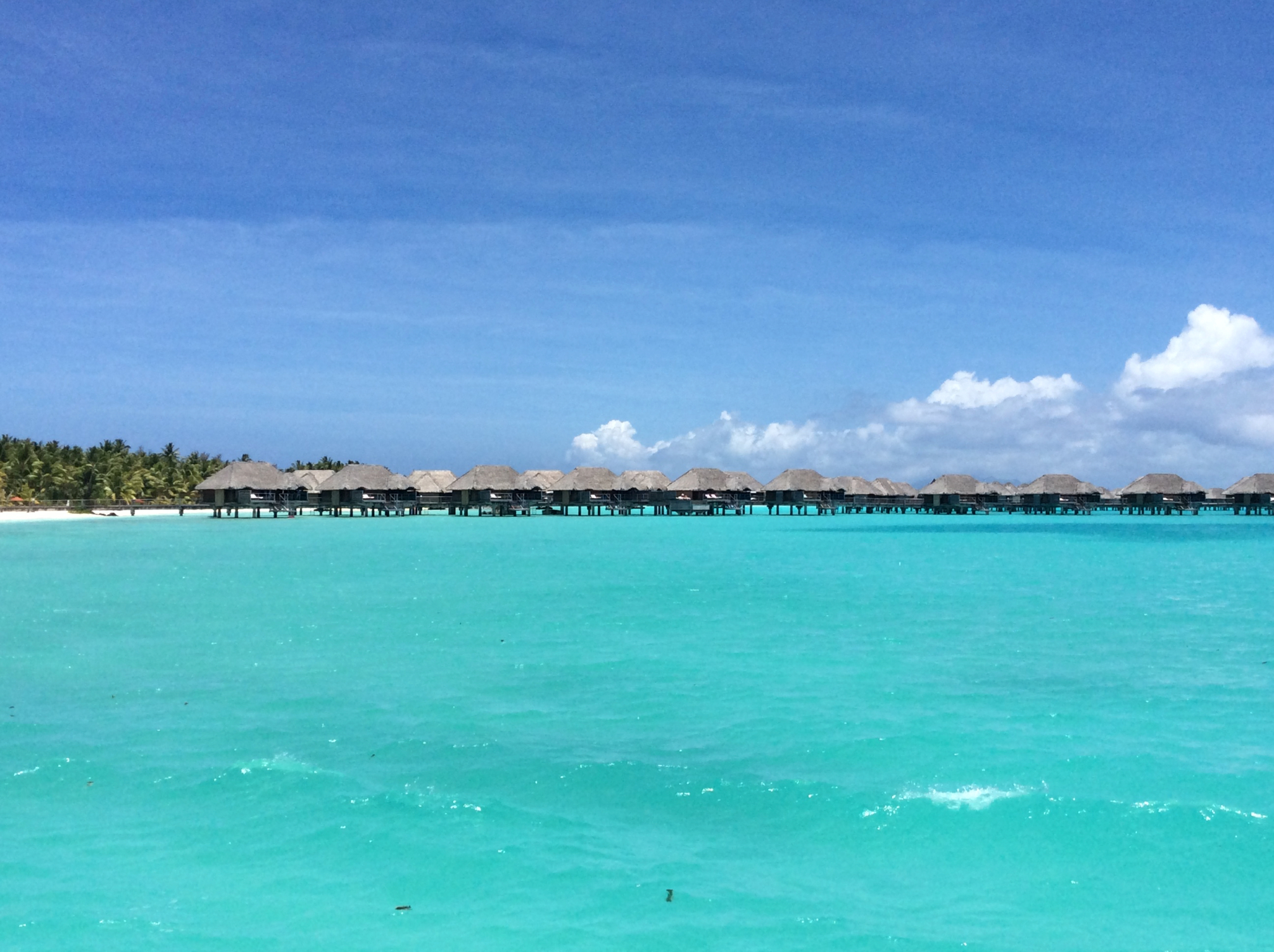 Four Seasons Bora Bora is a fifteen-minute speedboat ride from the airport.